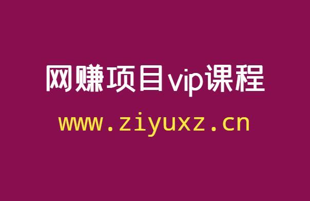 哪里有低价的网上副业项目vip课程(精品资源)
