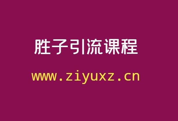 胜子引流课程(胜子视频教程大全)
